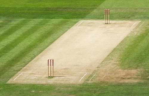 Cricket-pitch-length